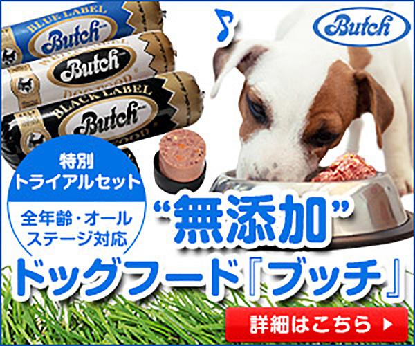 【ブッチ・ドッグフード】商品モニター