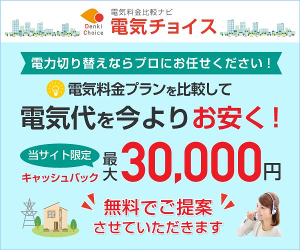 最大30000円現金キャッシュバック!【電気チョイス】(個人)