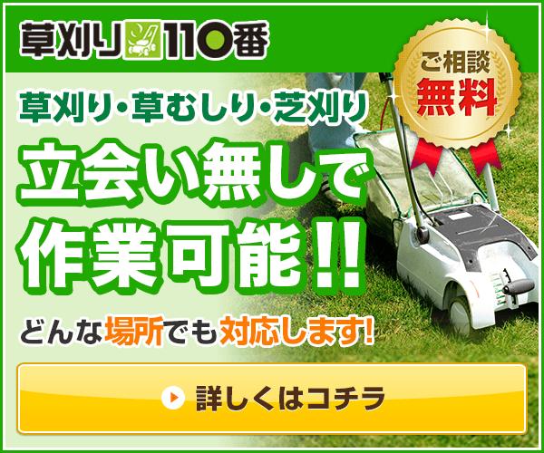 草刈り・芝刈り・草むしり(草取り)を1坪500円から お見積もり後の追加費用なしで対応! 庭の雑草予…