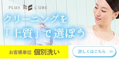 ☆プラスキューブ☆