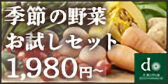 野菜宅配の大地を守る会/公式通販【お試しセット】
