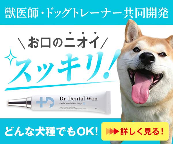 【愛犬のお口ケアに】歯磨き嫌いでも楽々ケア!ドクターデンタルワン